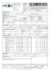 NFE-00000041.pdf