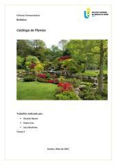 Catálogo de Plantas - Botânica.pdf