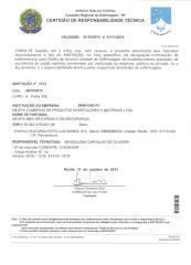 Responsavel Tecnica.pdf
