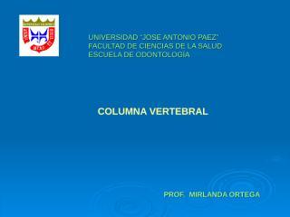 3 Columna Vertebral.ppt